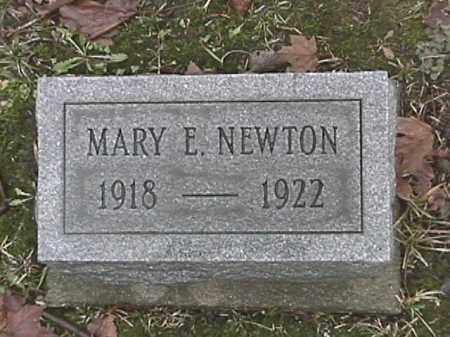 NEWTON, MARY E. - Champaign County, Ohio | MARY E. NEWTON - Ohio Gravestone Photos