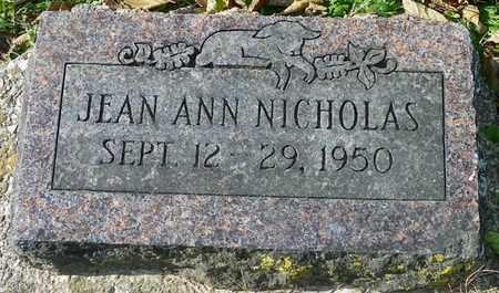 NICHOLAS, JEAN ANN - Champaign County, Ohio | JEAN ANN NICHOLAS - Ohio Gravestone Photos