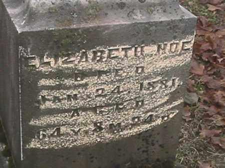 KESSLER NOE, ELIZABETH - Champaign County, Ohio | ELIZABETH KESSLER NOE - Ohio Gravestone Photos