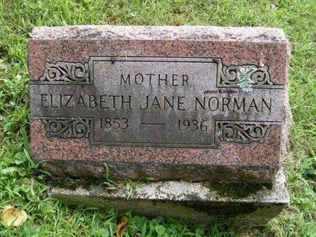 BARGER NORMAN, ELIZABETH JANE - Champaign County, Ohio | ELIZABETH JANE BARGER NORMAN - Ohio Gravestone Photos