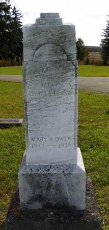 OWEN, WILLIAM - Champaign County, Ohio | WILLIAM OWEN - Ohio Gravestone Photos