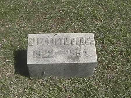 RIKER PENCE, ELIZABETH - Champaign County, Ohio | ELIZABETH RIKER PENCE - Ohio Gravestone Photos