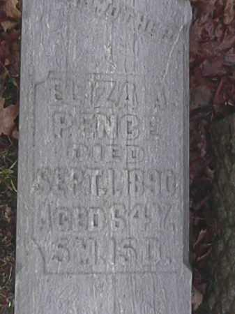 PENCE, ELIZA A. - Champaign County, Ohio | ELIZA A. PENCE - Ohio Gravestone Photos