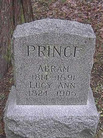APPLE PRINCE, LUCY ANN - Champaign County, Ohio | LUCY ANN APPLE PRINCE - Ohio Gravestone Photos