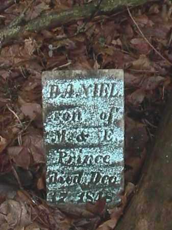 PRINCE, DANIEL - Champaign County, Ohio | DANIEL PRINCE - Ohio Gravestone Photos