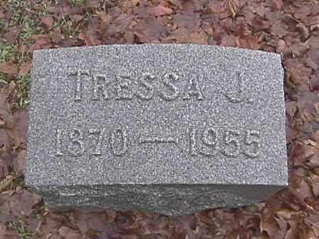 PRINCE, TRESSA J. - Champaign County, Ohio | TRESSA J. PRINCE - Ohio Gravestone Photos