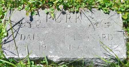 PURK, DAISY - Champaign County, Ohio | DAISY PURK - Ohio Gravestone Photos