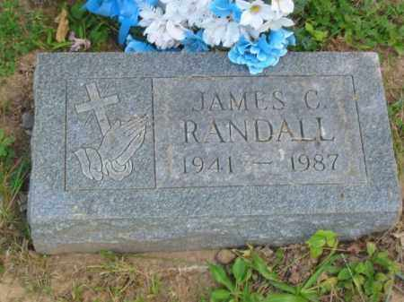 RANDALL, JAMES - Champaign County, Ohio | JAMES RANDALL - Ohio Gravestone Photos