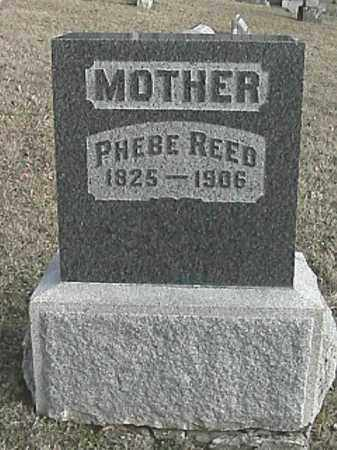 REED, PHEBE - Champaign County, Ohio | PHEBE REED - Ohio Gravestone Photos
