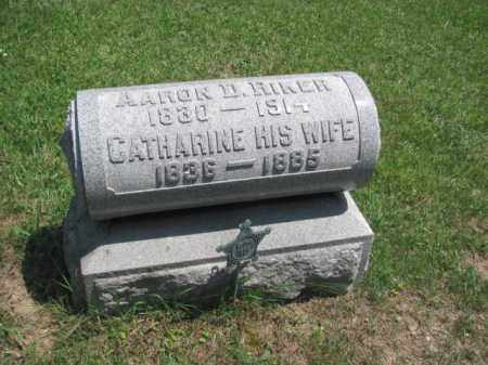 RIKER, CATHERINE - Champaign County, Ohio | CATHERINE RIKER - Ohio Gravestone Photos