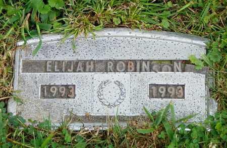 ROBINSON, ELIJAH - Champaign County, Ohio | ELIJAH ROBINSON - Ohio Gravestone Photos