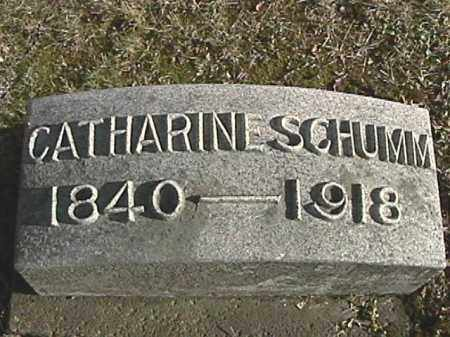 SCHUMM, CATHARINE - Champaign County, Ohio | CATHARINE SCHUMM - Ohio Gravestone Photos