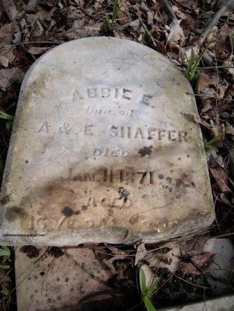 SHAFFER, ABBIE E - Champaign County, Ohio | ABBIE E SHAFFER - Ohio Gravestone Photos
