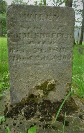 SHAFFER, WILEY - Champaign County, Ohio | WILEY SHAFFER - Ohio Gravestone Photos