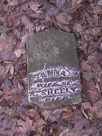 SHEELY, ANNA - Champaign County, Ohio | ANNA SHEELY - Ohio Gravestone Photos