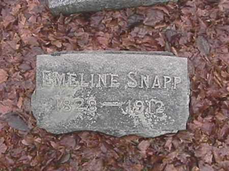 SNAPP, EMELINE - Champaign County, Ohio | EMELINE SNAPP - Ohio Gravestone Photos