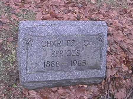 SPRIGGS, CHARLES C. - Champaign County, Ohio | CHARLES C. SPRIGGS - Ohio Gravestone Photos