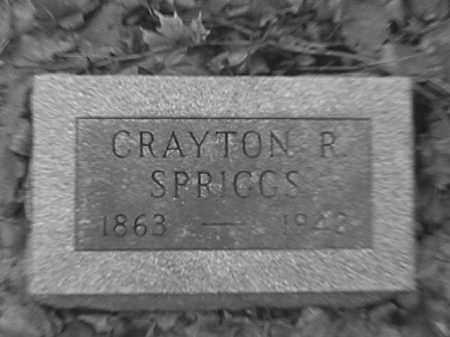 SPRIGGS, CRAYTON R. - Champaign County, Ohio | CRAYTON R. SPRIGGS - Ohio Gravestone Photos