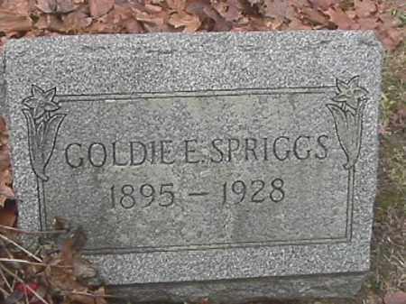 SPRIGGS, GOLDIE E - Champaign County, Ohio | GOLDIE E SPRIGGS - Ohio Gravestone Photos