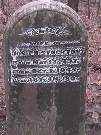LEEDOM STOCKTON, ALICE - Champaign County, Ohio | ALICE LEEDOM STOCKTON - Ohio Gravestone Photos