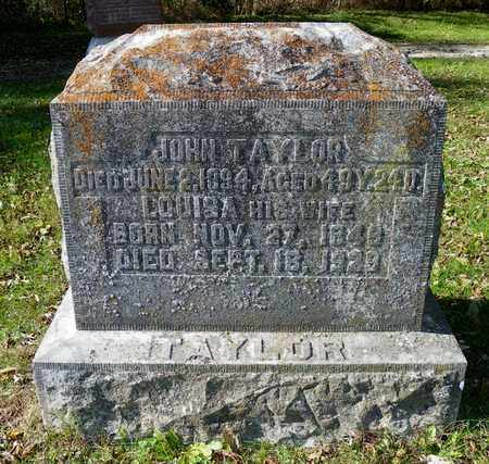 TAYLOR, LOUISA - Champaign County, Ohio | LOUISA TAYLOR - Ohio Gravestone Photos