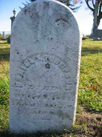 THOMPSON, DANIEL E. - Champaign County, Ohio | DANIEL E. THOMPSON - Ohio Gravestone Photos