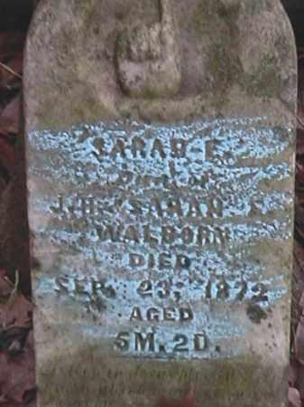 WALBORN, SARAH E. - Champaign County, Ohio | SARAH E. WALBORN - Ohio Gravestone Photos