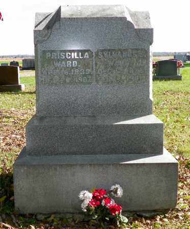 WARD, PRISCILLA - Champaign County, Ohio | PRISCILLA WARD - Ohio Gravestone Photos