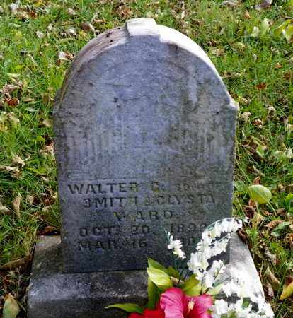 WARD, WALTER C. - Champaign County, Ohio | WALTER C. WARD - Ohio Gravestone Photos