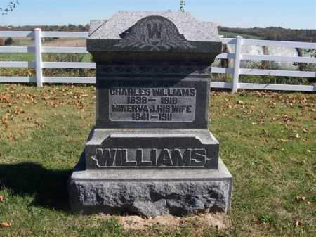 WILLIAMS, MINERVA T - Champaign County, Ohio | MINERVA T WILLIAMS - Ohio Gravestone Photos