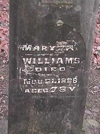 WILLIAMS, MARY R. - Champaign County, Ohio | MARY R. WILLIAMS - Ohio Gravestone Photos