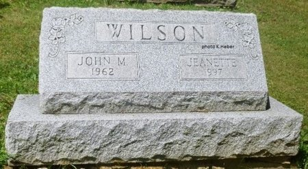"ALLEN WILSON, JEANETTE ""NETTIE"" - Champaign County, Ohio | JEANETTE ""NETTIE"" ALLEN WILSON - Ohio Gravestone Photos"