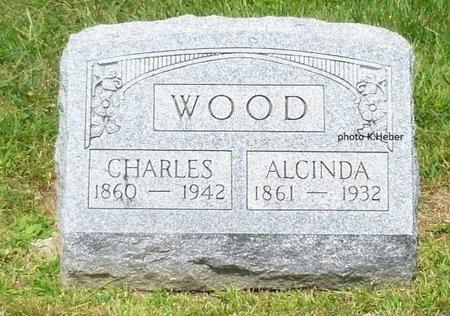 BAYLESS WOOD, ALCINDA - Champaign County, Ohio | ALCINDA BAYLESS WOOD - Ohio Gravestone Photos