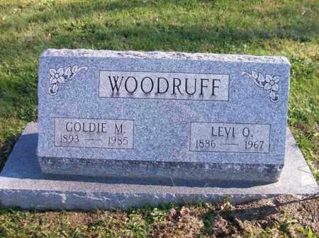 WOODRUFF, LEVI O. - Champaign County, Ohio | LEVI O. WOODRUFF - Ohio Gravestone Photos