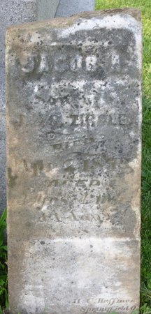 ZIRKLE, JACOB A - Champaign County, Ohio | JACOB A ZIRKLE - Ohio Gravestone Photos