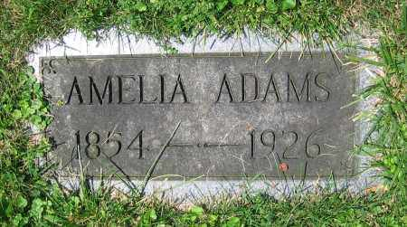 ADAMS, AMELIA - Clark County, Ohio | AMELIA ADAMS - Ohio Gravestone Photos