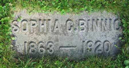 BINNIG, SOPHIA C. - Clark County, Ohio | SOPHIA C. BINNIG - Ohio Gravestone Photos