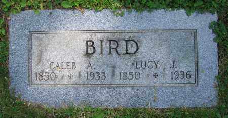 BIRD, CALEB A. - Clark County, Ohio | CALEB A. BIRD - Ohio Gravestone Photos
