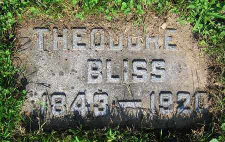 BLISS, THEODORE - Clark County, Ohio | THEODORE BLISS - Ohio Gravestone Photos