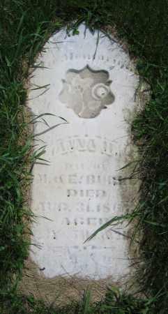 BURKE, ANNA H. - Clark County, Ohio | ANNA H. BURKE - Ohio Gravestone Photos