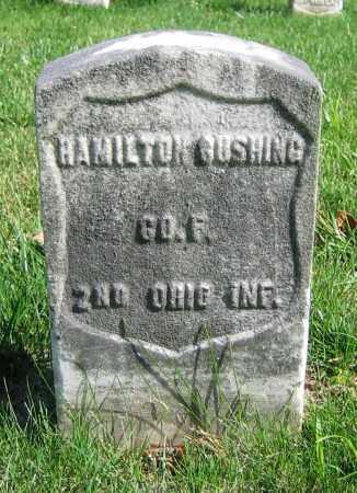 BUSHING, HAMILTON - Clark County, Ohio | HAMILTON BUSHING - Ohio Gravestone Photos