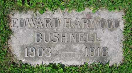 BUSHNELL, EDWARD HARWOOD - Clark County, Ohio | EDWARD HARWOOD BUSHNELL - Ohio Gravestone Photos
