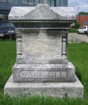 CALLAHAN, MARY A. - Clark County, Ohio | MARY A. CALLAHAN - Ohio Gravestone Photos