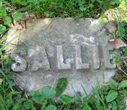 DUGAN, SALLIE - Clark County, Ohio | SALLIE DUGAN - Ohio Gravestone Photos