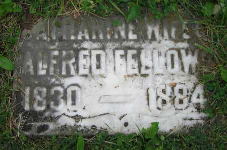 FELLOWS, CATHARINE - Clark County, Ohio   CATHARINE FELLOWS - Ohio Gravestone Photos