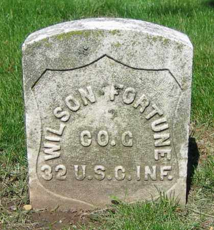 FORTUNE, WILSON - Clark County, Ohio | WILSON FORTUNE - Ohio Gravestone Photos