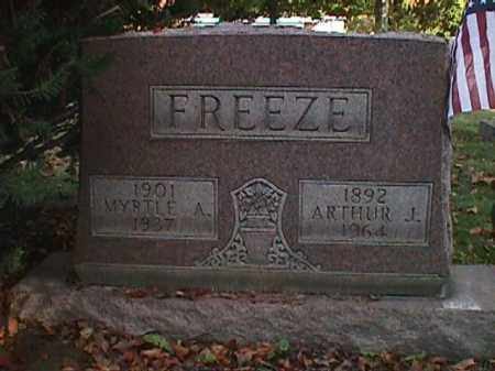 FREEZE, ARTHUR JAMES - Clark County, Ohio | ARTHUR JAMES FREEZE - Ohio Gravestone Photos