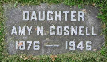 GOSNELL, AMY N. - Clark County, Ohio | AMY N. GOSNELL - Ohio Gravestone Photos