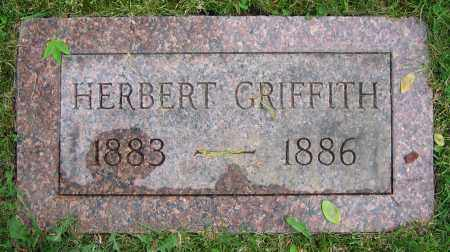 GRIFFITH, HERBERT - Clark County, Ohio | HERBERT GRIFFITH - Ohio Gravestone Photos