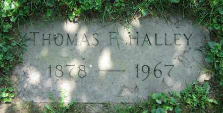 HALLEY, THOMAS F. - Clark County, Ohio | THOMAS F. HALLEY - Ohio Gravestone Photos